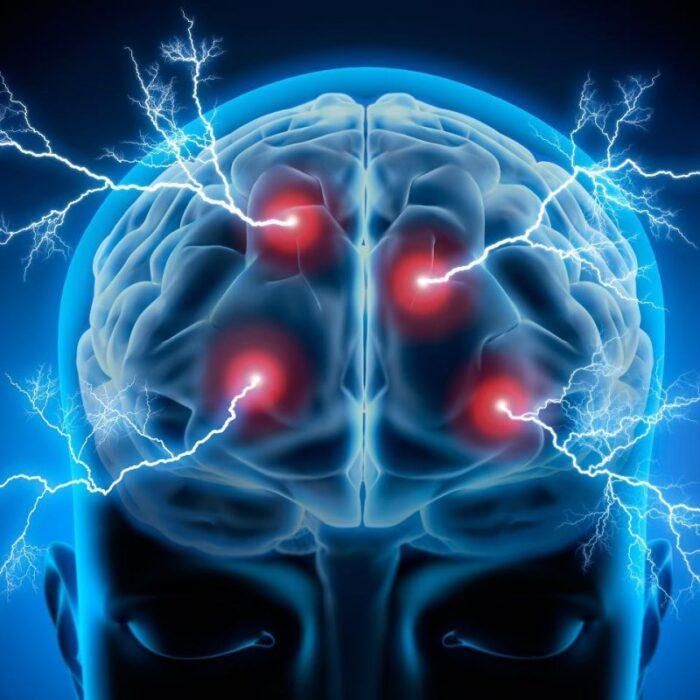 25 Libros PDF sobre Neurociencia para descargar. 8